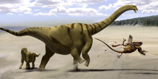 Wie Sind Dinosaurier Ausgestorben