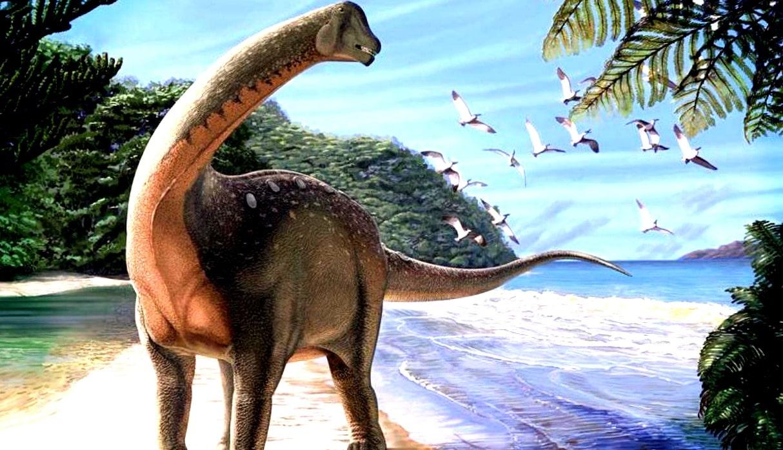 Wie Groß War Der Asteroid Der Die Dinosaurier Auslöschte