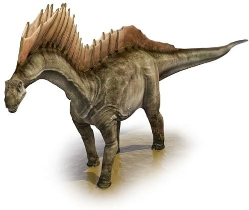 Amargasaurus Dinosaurier