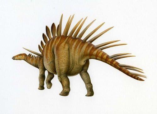 Kentrosaurus Dinosaurier