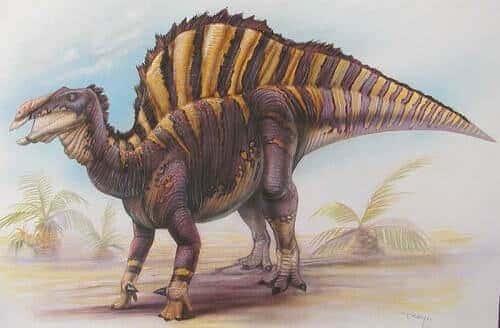 Ouranosaurus Dinosaurier