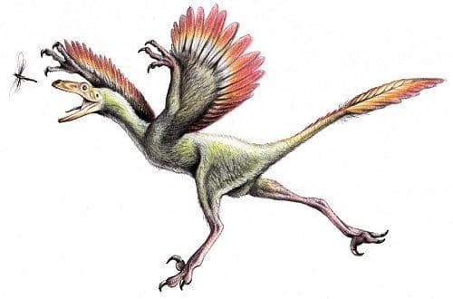 Bambiraptor Dinosaurier