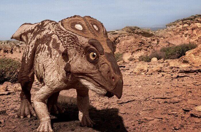 Dinosaurier Größe