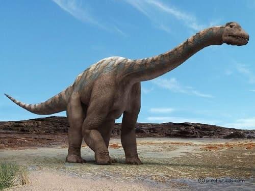 Argentinosaurus Dinosaurier