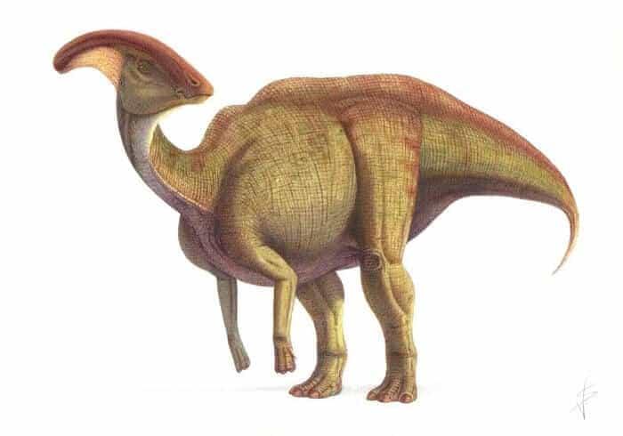 Parasaurolophus Dinosaurier